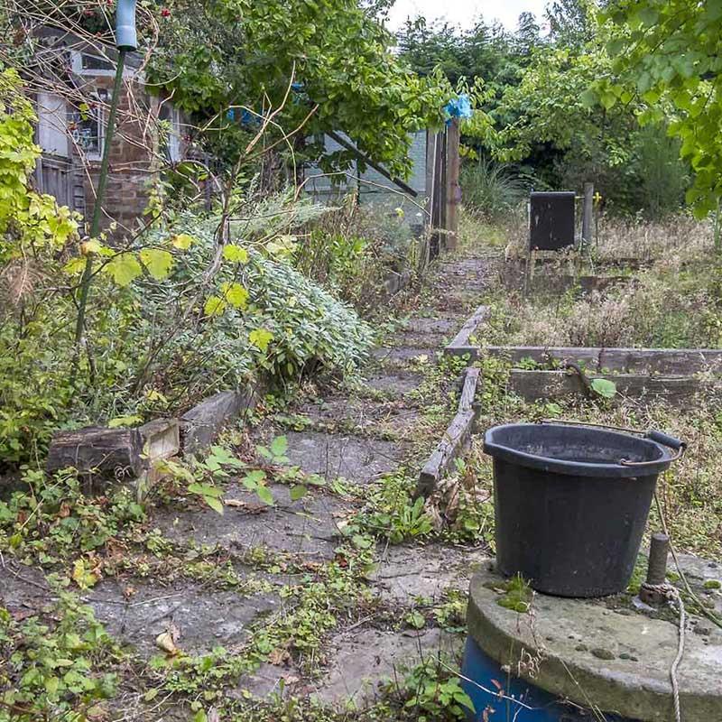 Garden Clearance Kent